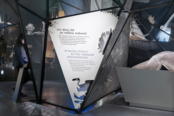 """Design graphique de l'exposition permanente """"Espèces, la maille du vivant"""", Musée des Confluences, Lyon"""