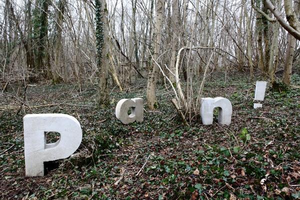 Installation artistique : Signes typographiques en béton au cœur d'une forêt de Champagne-Ardenne