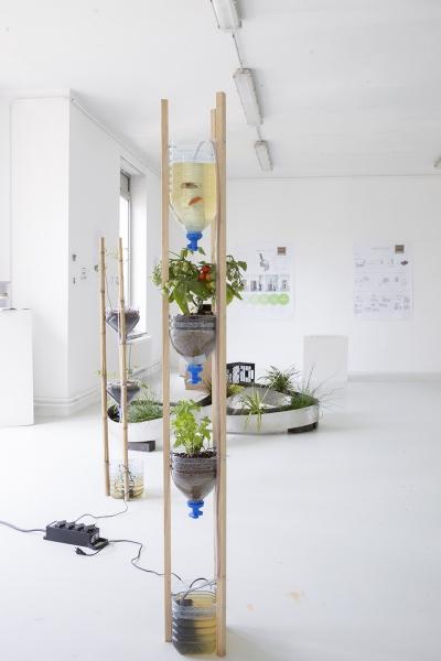 et objet est la matérialisation d'un principe existant, que j'ai réadapté à un utilisateur vivant en appartement, en centre-ville. L'aquaponie repose sur un cycle naturel observé entre la plante, l'eau et les poissons. En effet l'eau vectrice de vie pour