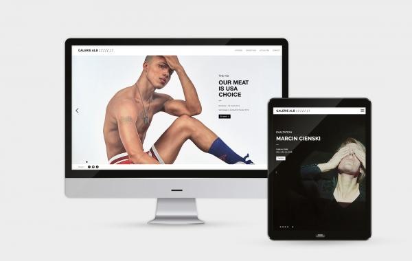 UX et UI du site de la galerie d'art contemporain Anouk Le bourdiec (ALB)