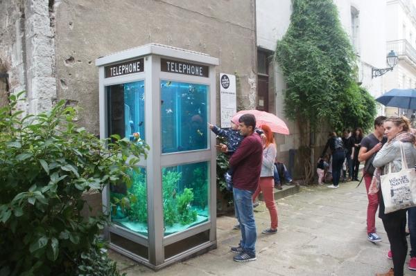 Benedetto Bufalino, La cabine téléphonique aquarium, Le voyage à Nantes 2016 (Commissaire d'exposition : Jean Blaise)