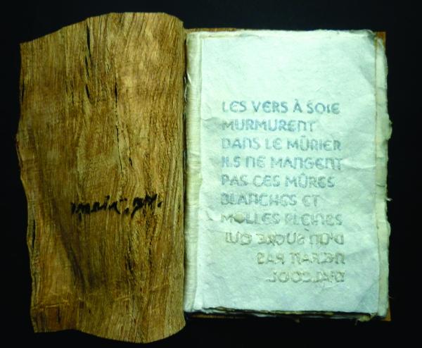 'Morphoses', Livre unique d'après le poème de Jacques Roubaud 'Vers à soie'. Papiers et reliure faits main, texte et dessin brodés à la main au fil de soie. La couverture est en écorce de mûrier. Le poème devient ma matière pour créer. Je ne l'illustre pa